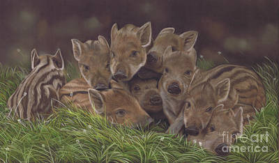 Painting - Huddle Of Humbugs by Karie-ann Cooper