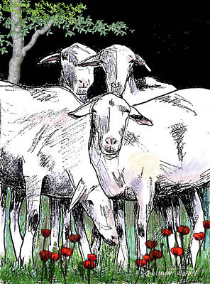 Lambs Digital Art - Huddled Together by Arline Wagner