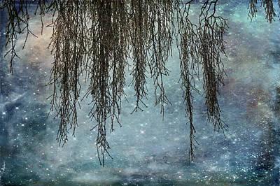 Photograph - Hues Of Blues by Randi Grace Nilsberg