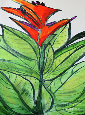 Painting - Huge Canna by Maura Satchell