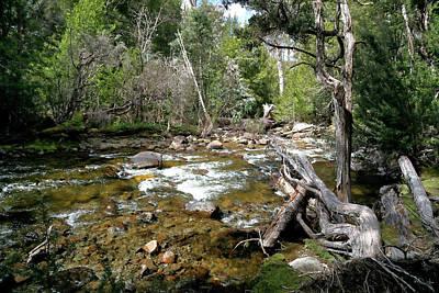 Photograph - Hugel River by Nicholas Blackwell