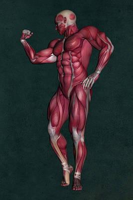 Human Anatomy 8 Art Print