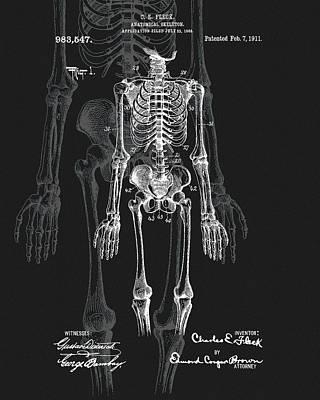 Drawing - Human Skeleton Patent Art by Dan Sproul