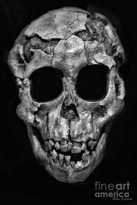 Photograph - Human Skull Black And White by Blake Richards