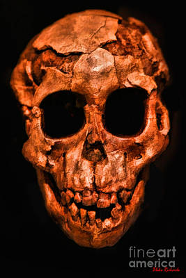 Photograph - Human Skull by Blake Richards