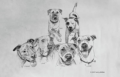 Drawing - Humane Society Gang by Larry Whitler