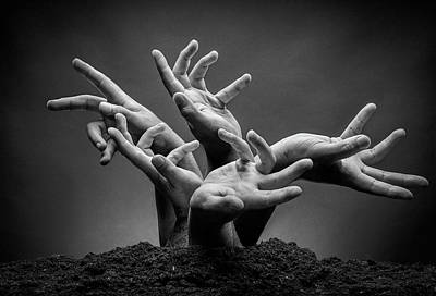 Photograph - Humanitree by Frederico Borges