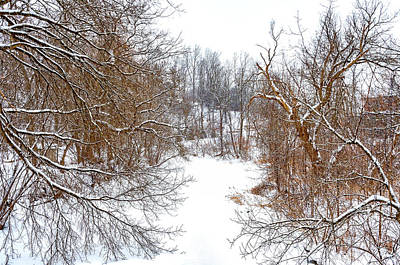 Photograph - Humber River - Winter Moods 3 by Steve Harrington