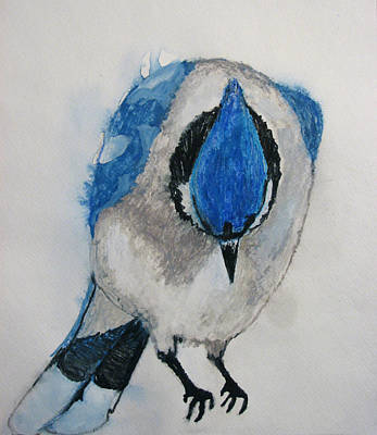 Bluejay Drawing - Humble Blue by Patricia Arroyo