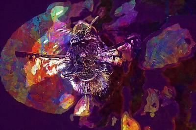 Digital Art - Hummel Acker Hummel Blossom Bloom  by PixBreak Art