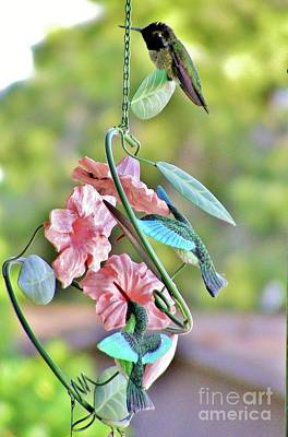 Wind Chimes Photograph - Hummer On Hummers by Marilyn Smith
