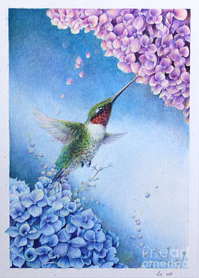 Drawing - Humming Bird And Hydrangeas  by Kay Walker