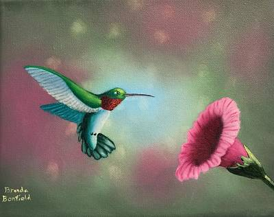 Humming Bird Feeding Art Print by Brenda Bonfield