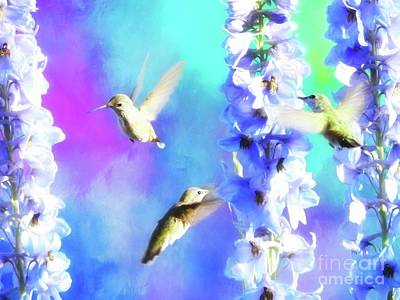 Digital Art - Humming Bird Trio by Suzanne Handel