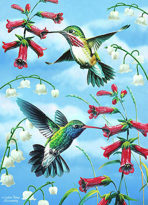 Songbird Painting - Humming Birds by JQ Licensing