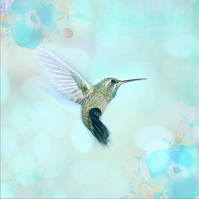 Hummingbird Mixed Media - Hummingbird by Amanda Lakey