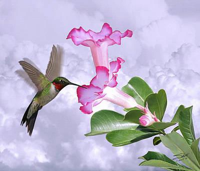 Digital Art - Hummingbird And Desert Rose by M Spadecaller