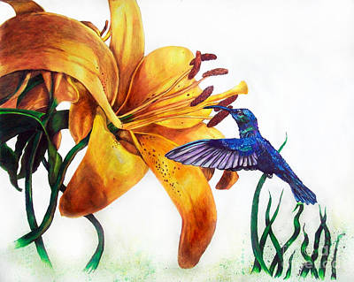 Hummingbird And Yellow Flower Art Print