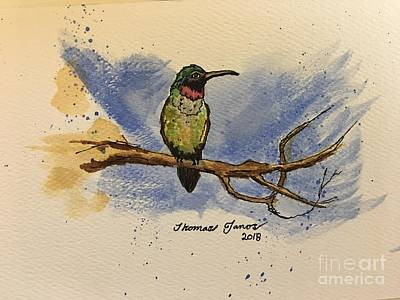 Painting - Hummingbird At Rest by Thomas Janos