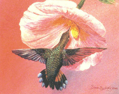 Painting - Hummingbird Beauty by Susan Elizabeth Wolding