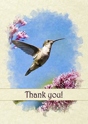 Photograph - Hummingbird Beauty Thank You Card by Christina Rollo