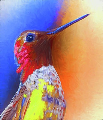 Photograph - Hummingbird by Carlos Diaz