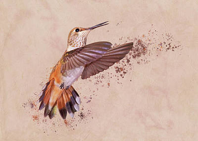 Photograph - Hummingbird Color Splash I by Leda Robertson