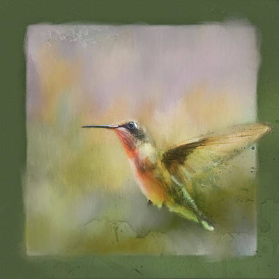 Photograph - Hummingbird Dance Bird Art by Jai Johnson