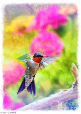 Photograph - Hummingbird Day 2 -  Tall by Debbie Portwood