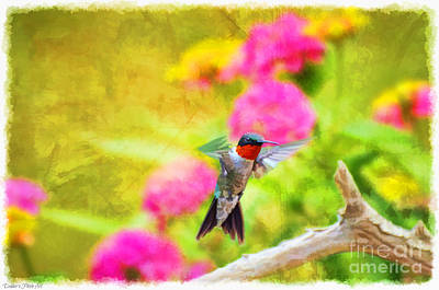 Photograph - Hummingbird Day - Digital Paint 1 by Debbie Portwood
