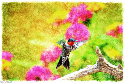 Photograph - Hummingbird Day - Digital Paint 2 by Debbie Portwood