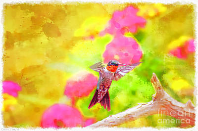 Photograph - Hummingbird Day - Digital Paint 3 by Debbie Portwood