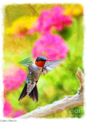 Photograph - Hummingbird Day - Tall by Debbie Portwood