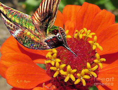 Painting - Hummingbird Delight by Kimberlee Baxter