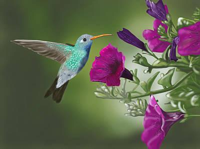 Digital Art - Hummingbird by Dorothy Riley