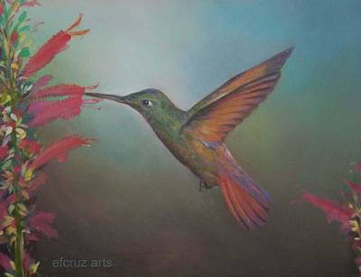 Bir Painting - Hummingbird by Efcruz Arts