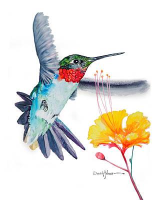 Painting - Da169 Hummingbird Flittering Daniel Adams by Daniel Adams