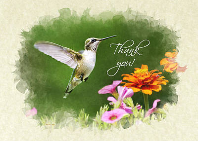 Photograph - Hummingbird Flying With Flowers Thank You Card by Christina Rollo