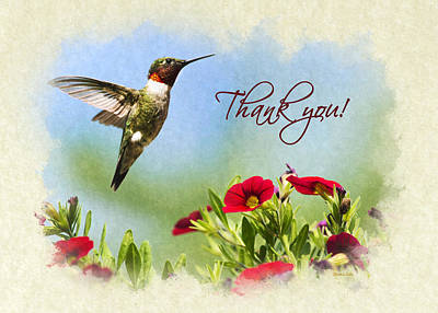Photograph - Hummingbird Frolic With Flowers Thank You Card by Christina Rollo