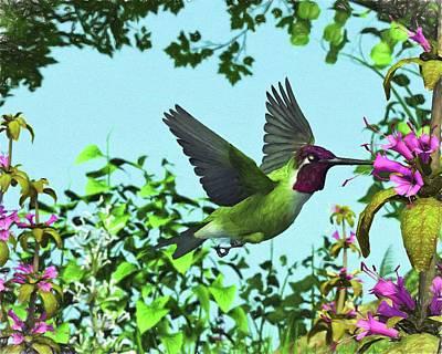 Digital Art - Hummingbird Haven by Jayne Wilson