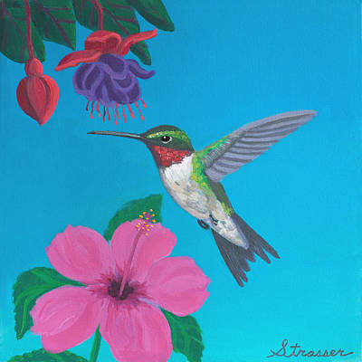 Hummingbird Heaven Art Print by Frank Strasser