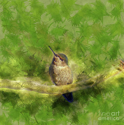Painting - Hummingbird In A Tree by Methune Hively