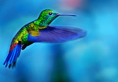 Photograph - Hummingbird In Flight 2 by Bibi Rojas