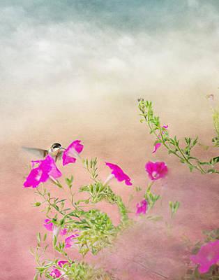Hummingbird In Flight Art Print by Gwen Gibson