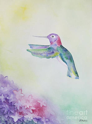Fauna Painting - Hummingbird In Flight by Jordan Parker