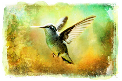 Painting - Hummingbird In Flight Watercolor Wash by Christina VanGinkel