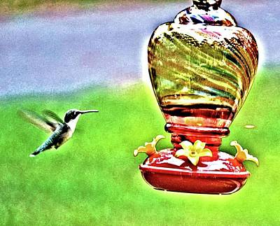 Photograph - Hummingbird In Summer by James Potts