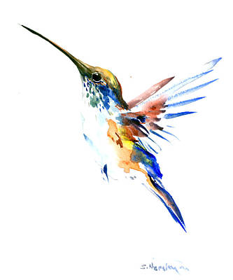 Hummingbird Drawing - Hummingbird Olive Green, Blue by Suren Nersisyan