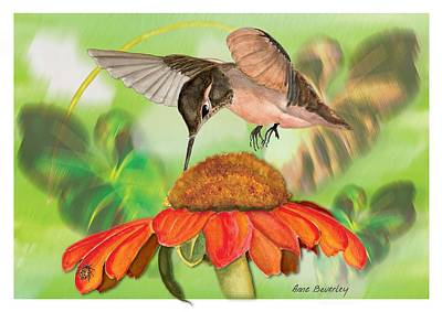 Art Print featuring the painting Hummingbird On Flower by Anne Beverley-Stamps