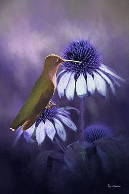 Painting - Hummingbird On The Cone Flower - Painting by Ericamaxine Price